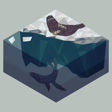 Low Poly Seals On Iceberg, Sea...