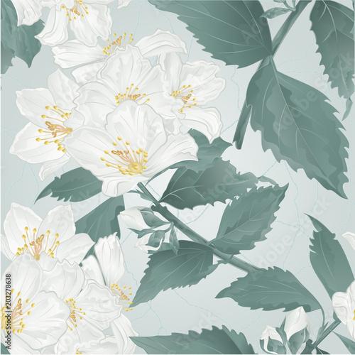 seamless-texture-twig-spring-flower-jasmine-and-buds-crack-vintage-vector-illustration-editable-hand-draw