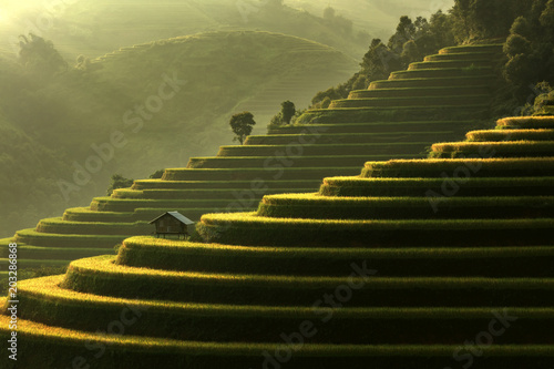 In de dag Rijstvelden Mu Cang Chai, landscape terraced rice field near Sapa, north Vietnam