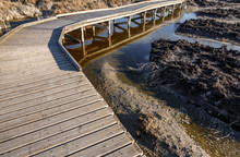 Wooden Bridge Across The Dry L...