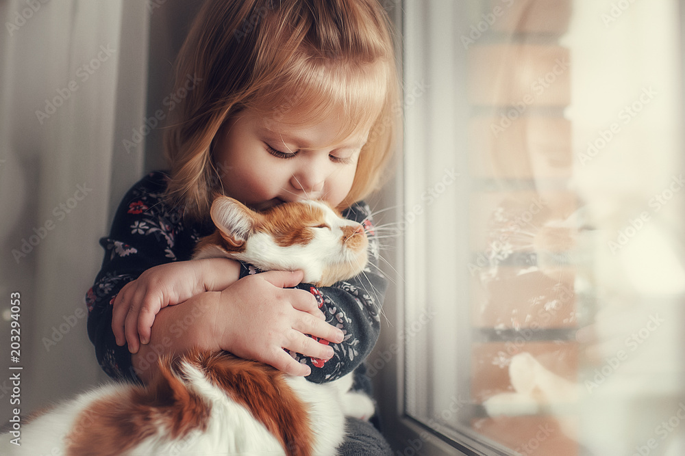 Fototapety, obrazy: A small cute child with naked hair gently embraces a red fluffy cat