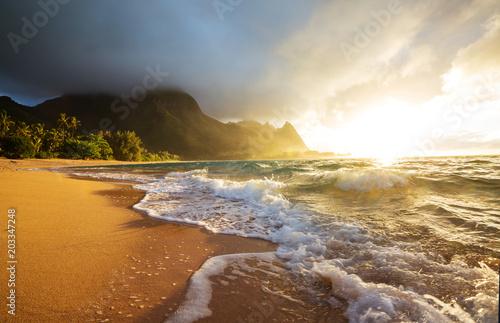 Photo Stands Oceania Kauai