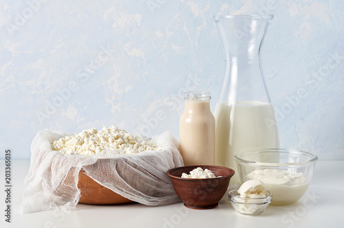 Tuinposter Zuivelproducten Set of dairy products on light blue background. Cottage cheese, sour cream, mascarpone and fermented baked milk