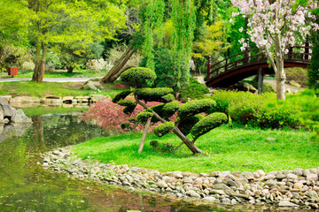 Naklejka Japoński Beautiful japanese garden and pond in spring time.