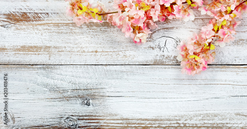Blooming seasonal cherry blossom flowers on white vintage wood in overhead view for spring concept