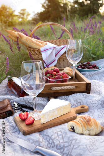 Tuinposter Picknick Picnic in the meadow