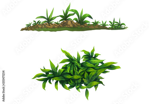 Fototapeta illustration shrub for cartoon isolated on white background