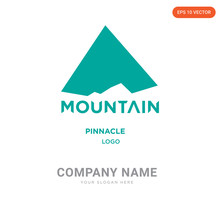 Pinnacle Company Logo Design