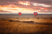 Masai Mara Sunrise With Wildebeest And Balloons
