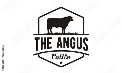 Retro Vintage Angus Cattle / Beef logo design vector Wallpaper Mural