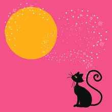 Black Cat Look At The Full Moon On Starry Night Pink Background