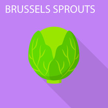 Brussels Sprouts Icon. Flat Il...