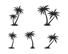 Palm Tree Icon Template Vector...