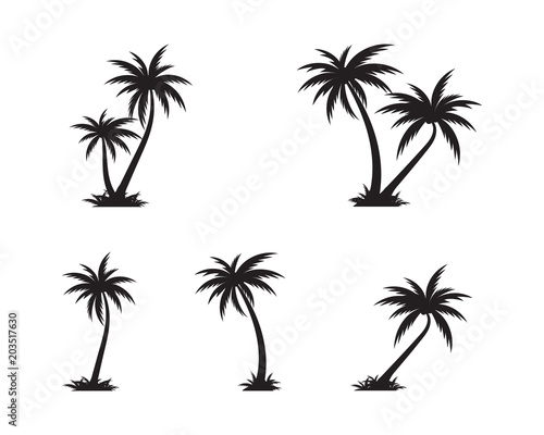 Photo  Palm tree icon template vector illustration