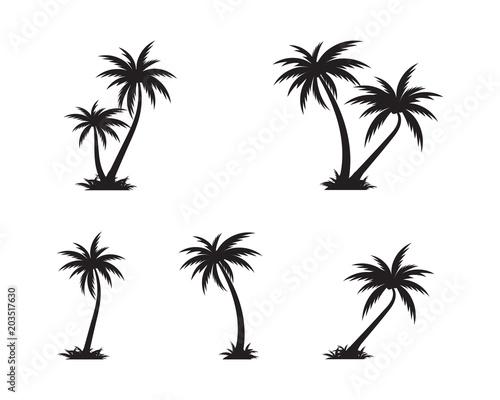 Palm tree icon template vector illustration Fototapeta