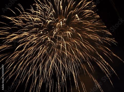 Fotografie, Obraz  Fuochi d'artificio bianchi