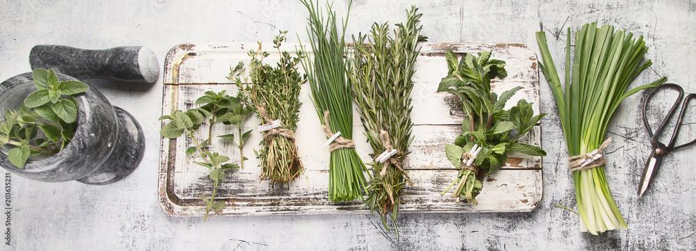 Fototapety, obrazy: Fresh garden herbs