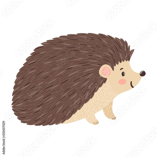 Cuadros en Lienzo Vector illustration of smiling hedgehog