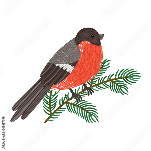 Foto Vector illustration of bullfinch sitting on fir branch