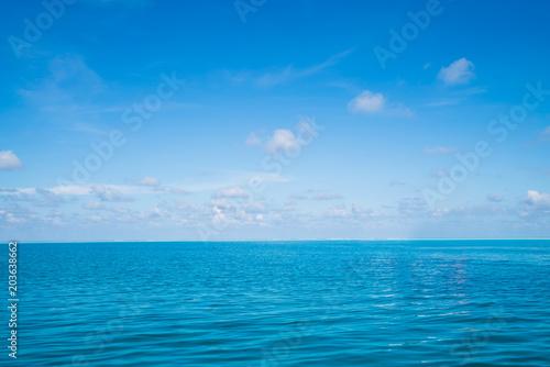 Aluminium Prints Green coral Ocean nature background. Sea and summer landscape.