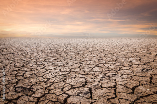 Land with dry and cracked ground. Desert,Global warming background - 203642674