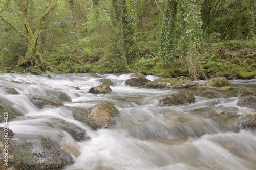 Foto op Canvas Rivier Mountain river in Galicia, Spain