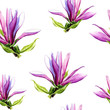 Seamless pattern of Magnolia flowers painted in watercolor.