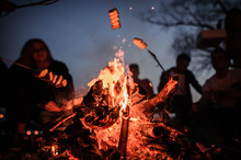 Young And Cheerful Friends Sitting And Fry Marshmallows On The Foreground Of Bonfire