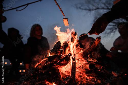 Obraz Young and cheerful friends roasting marshmallows near bonfire - fototapety do salonu