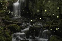 Beautiful Fantasy Image Of Fir...