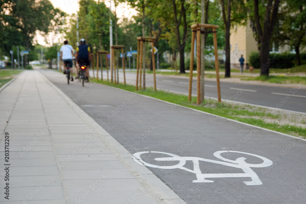 Fototapeta Bicycle road sign on asphalt. Ciąg pieszo-rowerowy.