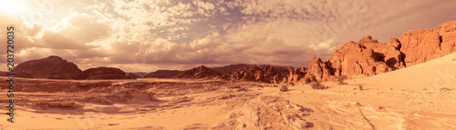 Canvas Prints Drought Panorama Sand desert Sinai, Egypt, Africa