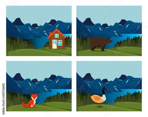 In de dag Pool canadian landscape scene icon vector illustration design