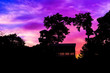 canvas print picture - Magical Sunset in Assam, India