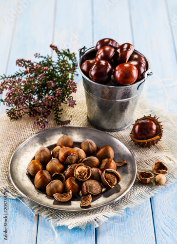 Chestnuts and cones in basket