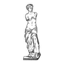 Aphrodite Ancient Statue Engraving Vector