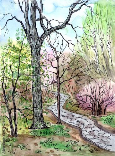 Wiosna krajobraz, rysunek z akwarela i liniowej. Widok na park ze ścieżką, szkic.