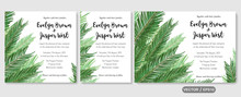 Wedding Invite Invitation Menu Card Vector Floral Greenery Design: Sago Palm Leaves Foliage Greenery Frame Pattern. Postcard, Poster Label. Watercolor Elegant Hand Drawn Set