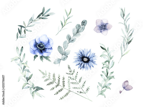 Watercolor floral greenery set. Hand drawn isolated vector illustration. Botanical art background