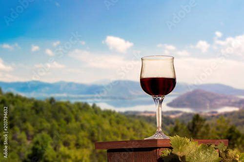 glass of red wine in a vineyard on the Kastoria town background. Greece
