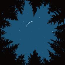 Vector Night Sky With Stars An...