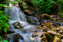 Small Waterfall In Forest. Lov...