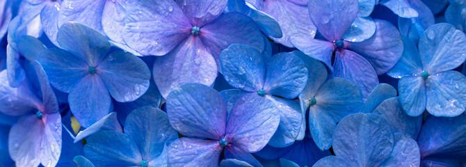 Panel Szklany Fundo com flores azuis