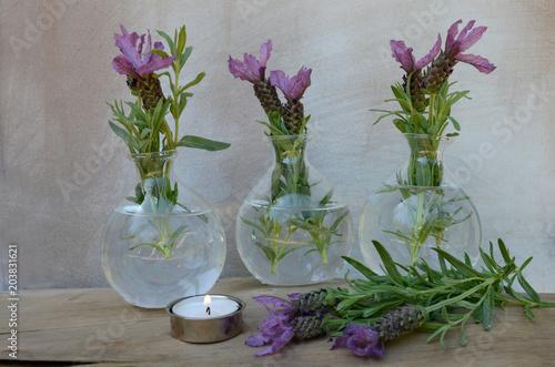 Fototapeta Lavendel in Glasvase- Hintergrund obraz na płótnie