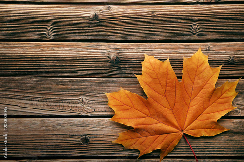 Dry maple leaf on brown wooden table