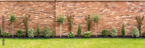Photo panoramic image of a newly planted garden or back yard of hardy trees, shrubs an