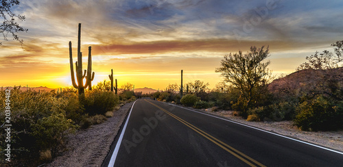 Foto auf Leinwand Arizona Arizona Desert Sunset Road