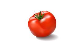 Vector Illustration Of Big Ripe Red Fresh Tomato Isolated On White Background