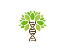 Tree Dna Icon Logo Design Element
