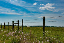 Fenceline Background